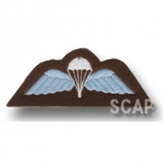 Para Wing(Full Color)