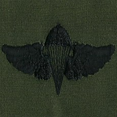 [Best Emblem & Insignia] US Navy Parachutist - Subdued / 미해군 공수윙 패치